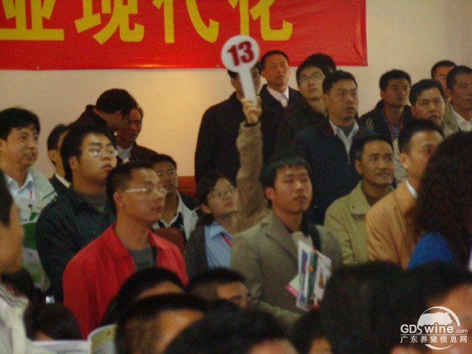 第二十六届广东养猪产业博览会暨种猪拍卖会