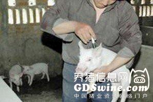 大华农猪瘟活疫苗获农业部产品批准文号