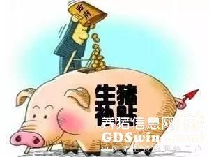 在各地禁养的背景下 这些生猪调出大县获亿元财政奖励【正业特约-每周热文】