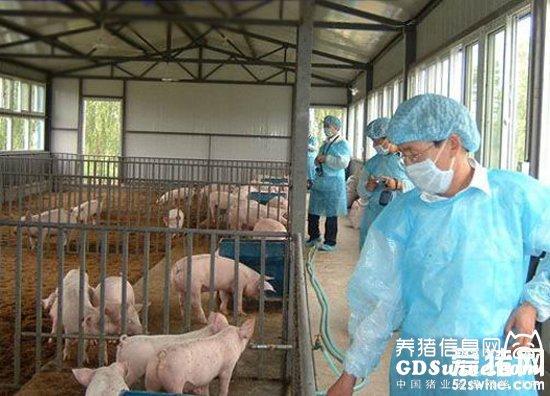 洪涝灾害动物疫病防控要点