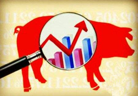 两大企业对猪价走向预计截然相反,猪友:有赚就卖吧!