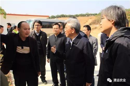 农业部张桃林副部长一行到我市调研农业环保和财政金融支农工作