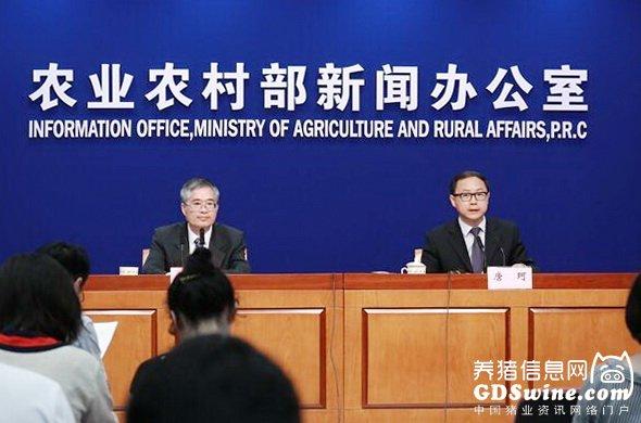 关于下半年猪价,农业农村部、国家统计局做出权威判断......