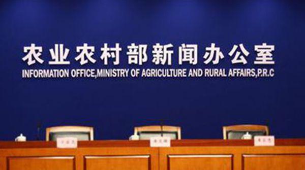 生猪产能恢复周期长制约多|农业农村部:陆续推动解决政策落实问题