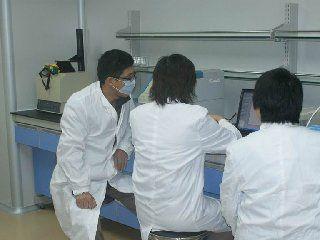 工作室团队在讨论实验数据