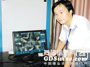 武夷畜牧公司总经理柯荣峰:生态养猪的佼佼者