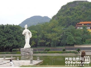 <b>刘三姐故里:山歌唱响双胞胎</b>