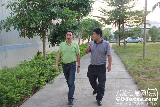 养猪信息网记者拜访vwin000商大公司