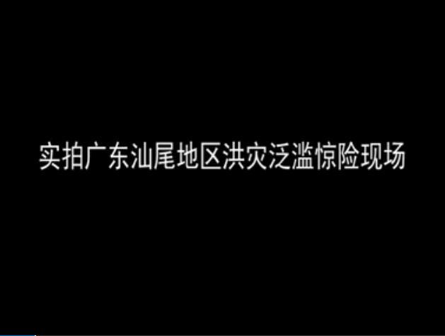 视频:实拍广东汕尾洪灾泛滥 猪群水中游泳