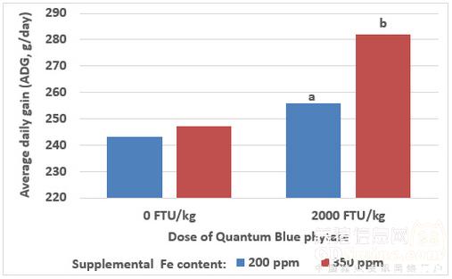图 2 - 补铁以及断奶后20天添加0 FTU/kg(试验1)与2000 FTU/kg(试验2)昆腾蓝对猪的增重速度的影响