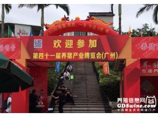 第41届养猪产业博览会:播恩精彩亮相,备受瞩目