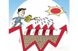 价格虽有高位下行的走势 但依旧是收获的季节
