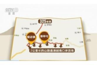 """揭秘越南走私猪猖獗黑幕:神秘""""保车人""""身份令人震惊"""
