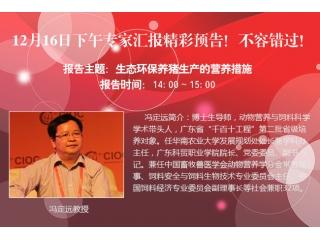 <b>博览会12月16日下午专家汇报预告!名家汇聚,精彩纷呈!</b>