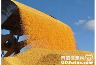 人民日报谈农业改革:政府多放手 市场出好手
