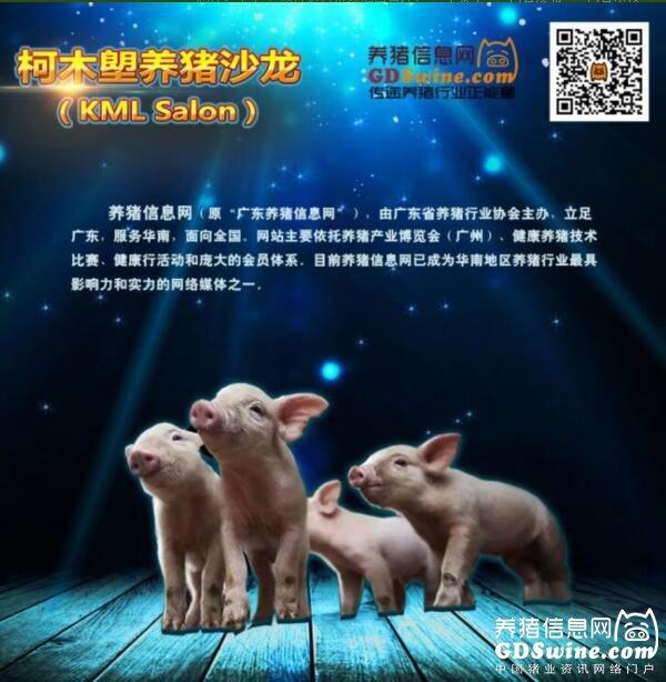 2017年第一期柯木�i养猪沙龙即将举办6