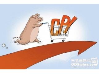 中国猪价全线猛涨!该担心通胀了?