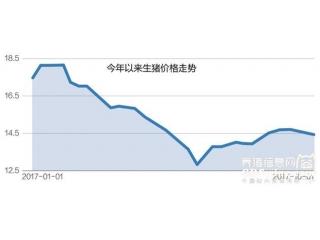 <b>扩产猪企盈利已显现,正邦9月销售收入大增379%</b>