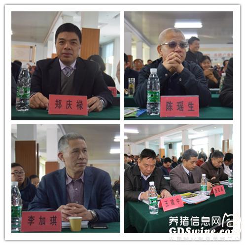 """第44届养猪产业博览会(广州)圆满结束,拍出1.1万的""""猪王"""""""