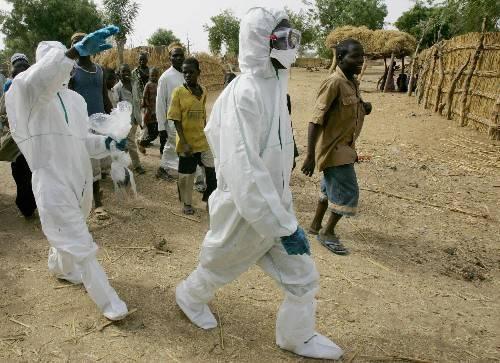 埃及11个大型养殖场再现禽流感 已采取紧急措施