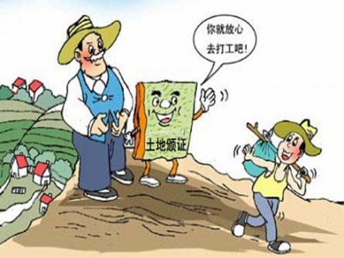 如何推动乡村振兴?农业部要求养猪业这么干