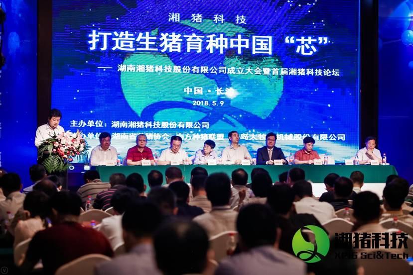 """湖南发出养猪业最强音:打造生猪育种中国""""芯"""""""