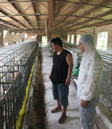 郭老板带我们参观干净亮堂的母猪舍