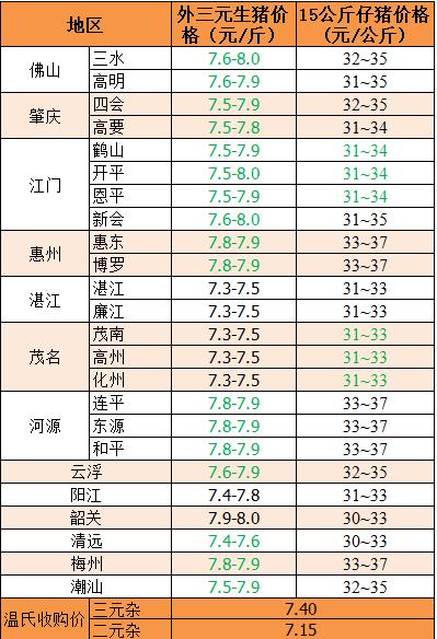 广东省猪价