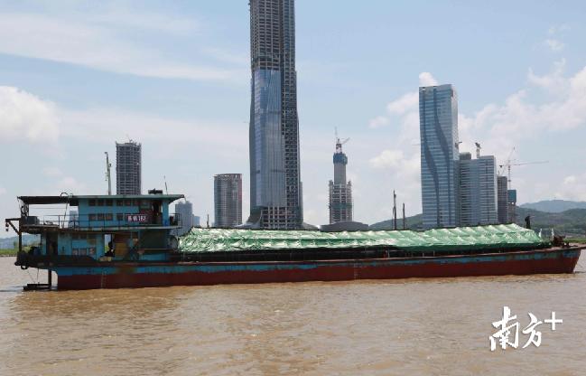 广东海警查获涉嫌走私冻品357吨 涉案1600万元
