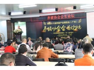 第46届养猪产业博览会(广州)图集之养猪协会会长论坛暨非洲猪瘟防控联盟(广东)成立仪式