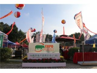 第46届养猪产业博览会(广州)图集之现场风采