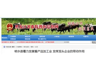 重整旗鼓!黑龙江发展亚欧牧业生猪屠宰项目,扩大生猪养殖量!