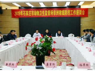 河北石家庄市动监所召开非洲猪瘟防控座谈会,未有可疑病例
