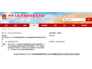 严处问责!农业农村部对黑龙江、江苏两期规模养殖企业非瘟疫情违法违规查处通报