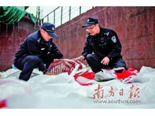 广州海关:2019年已查获走私猪蹄、鸡脚等冻品1816吨,案值人民币4312万元