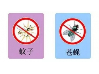 猪场灭蚊和灭蝇有什么好的方法吗?
