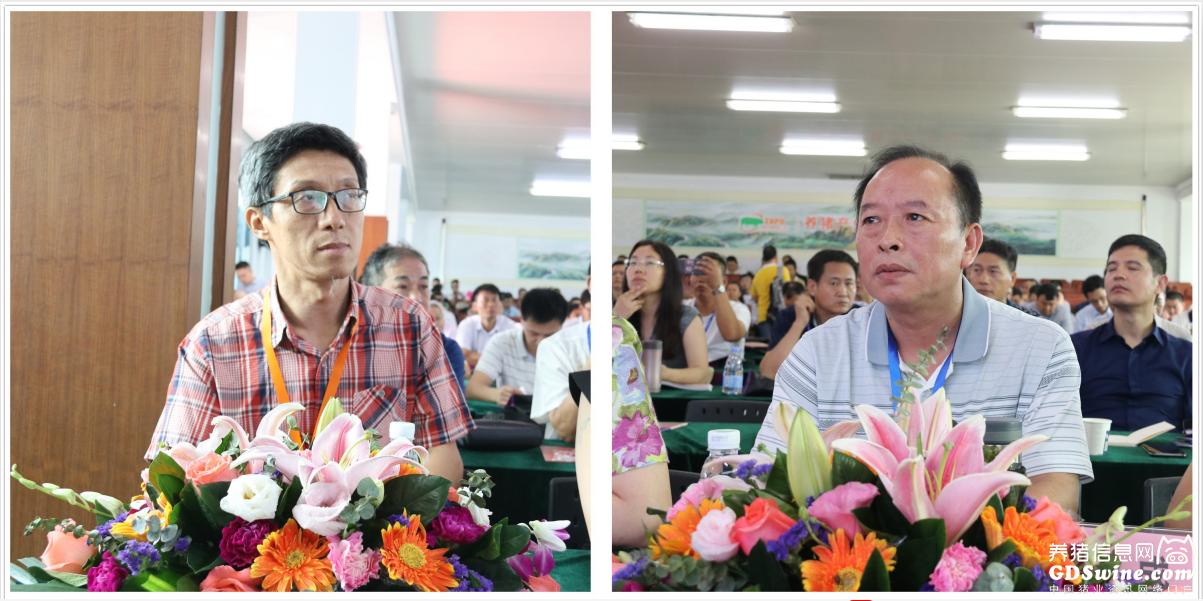 华南农业大学兽医学院张桂红教授