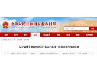 辽宁截获3起外省运入生猪,排查出非瘟疫情