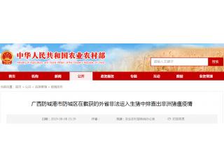 <b>广西防城港市防城区在截获的外省非法运入生猪中排查出非洲猪瘟疫情</b>