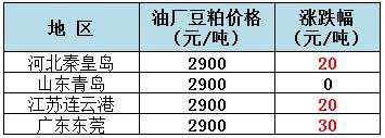 2019年8月7日全国重要地区油厂豆粕(43%蛋白)价格