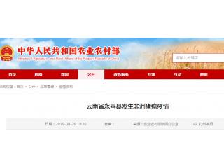 云南省永善县发生非洲猪瘟疫情