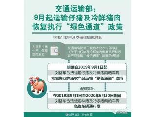"<b>9月起运输仔猪及冷鲜猪肉恢复执行""绿色通道""政策</b>"