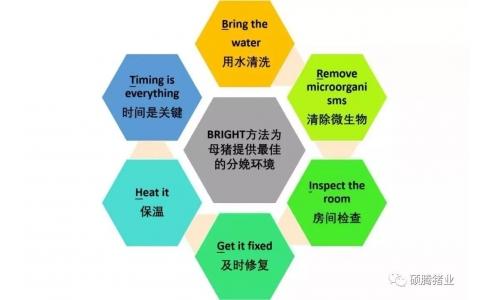 打造最佳产房环境的六个步骤