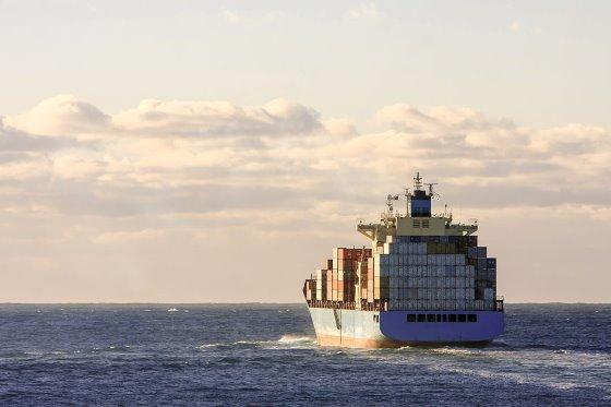 <b>最新研究:非瘟病毒可在越洋运输中存活30天</b>