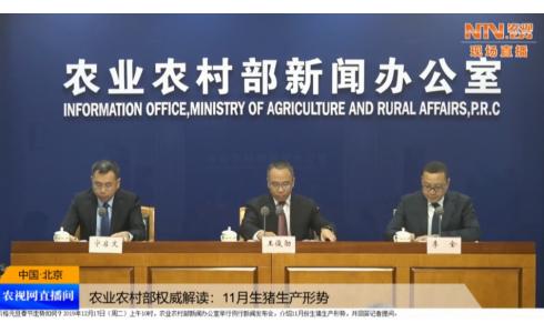 农业农村部:11月份生猪生产形势例行新闻发布会