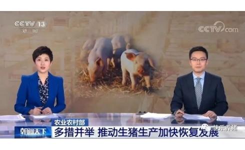 农业农村部:全国共排查出10.1万个禁养区,春节前纠正禁养区扩大化问题