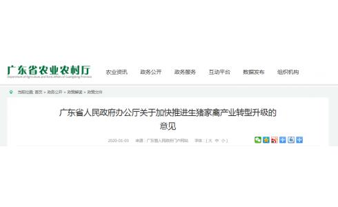 广东省人民政府办