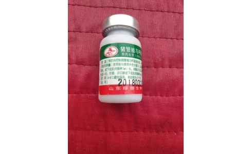 镇动物防疫站被举报发放疑似假疫苗,河南襄城农村局:正核对
