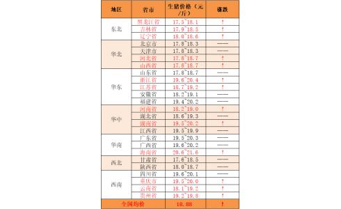 """【永顺特约-今日猪价】2020年8月3日:猪价多省""""飘红"""""""