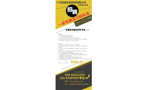 2020人才招聘,广州迈微诚邀您的加入!